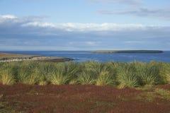 Paysage d'été d'une île plus morne Photo libre de droits