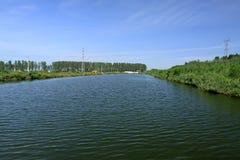 Paysage d'étang dans le sauvage Photo stock