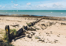 Paysage d'île de Noirmoutier, France Photographie stock libre de droits