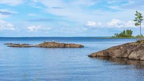 Paysage d'île de Valaam avec des mouettes Photos stock