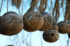 Paysage d'île de wuzhizhou : métiers de noix de coco Image stock
