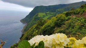 Paysage d'île des Açores image libre de droits