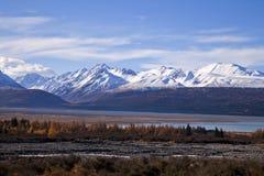 Paysage d'île du sud, Nouvelle-Zélande Image stock