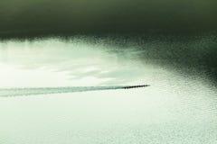 Paysage d'air de Paddlers de canoës photos stock