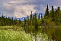 Paysage d'Alaska Photo stock