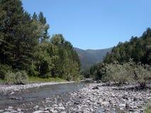 Paysage d'Altai Photographie stock