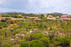 Paysage d'Aruba Photos libres de droits