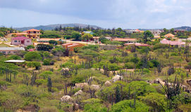 Paysage d'Aruba Image libre de droits