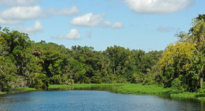Paysage d'Astor Florida St Johns River photos libres de droits