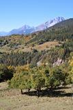 Paysage d'automne Image libre de droits