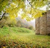 Paysage d'automne Photographie stock libre de droits
