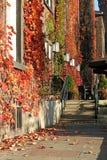 Paysage d'automne Photos stock