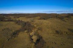 paysage d'automne avec des chênes photographie stock