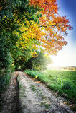 Paysage d'automne avec la route de campagne Photos stock