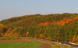 Paysage d'automne avec la route vide sinueuse Photos stock