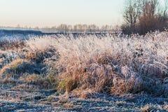 Paysage d'automne avec le gel images stock
