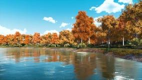 Paysage d'automne avec les arbres et le lac scéniques de forêt banque de vidéos