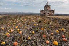 Paysage d'automne avec les potirons et la vieille église Photographie stock