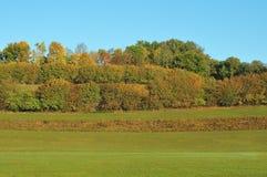 Paysage d'automne avec les prés et le bosquet images libres de droits