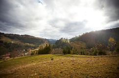 Paysage d'automne dans le village de montagne Photos libres de droits