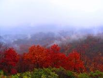 Paysage d'automne dans les montagnes Images libres de droits