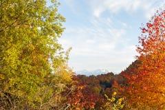 Paysage d'automne dans les montagnes de Lago-Naki Images libres de droits