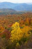 Paysage d'automne dans les montagnes de Lago-Naki Photos libres de droits