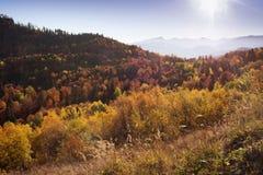 Paysage d'automne dans les montagnes de Lago-Naki Photographie stock libre de droits