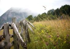 paysage dans carpathien Image stock