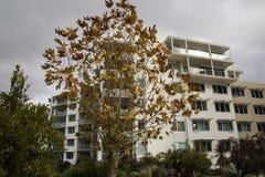 Paysage d'automne dans une ville Image stock