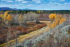 Paysage d'automne dans Yellowstone images libres de droits