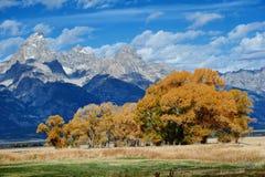 Paysage d'automne dans Yellowstone photo libre de droits