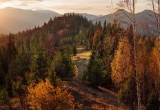 Paysage d'automne de Forest Hills et de montagnes sur le coucher du soleil clear image stock
