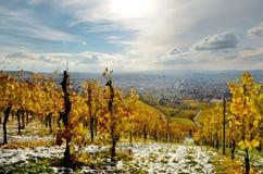 Paysage d'automne de l'Allemagne avec la vue des collines de vignoble Image stock