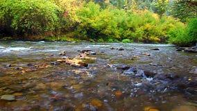 Paysage d'automne de l'Utah de rivière de cachette banque de vidéos