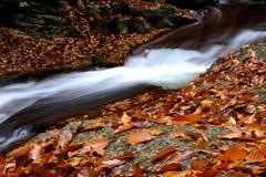 Paysage d'automne de Sichuan Image libre de droits