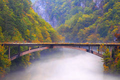 Paysage d'automne en montagnes Photos stock
