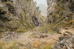 Paysage d'automne en montagnes de Cernei, la gorge de Tesna Photo libre de droits