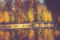 Paysage d'automne en parc de matin Vue des arbres colorés et de la réflexion dans l'eau Image stock