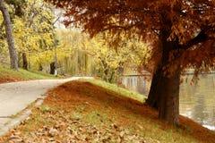 Paysage d'automne en stationnement photographie stock
