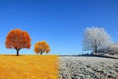 Paysage d'automne et d'hiver avec le ciel bleu photos stock