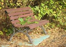 Paysage d'automne - feuilles d'automne tombées sur un banc en bois isolé dans les profondeurs du vieux parc Photographie stock libre de droits