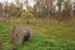 Paysage d'automne : forêt ou parc Arbres et herbe multicolores images stock