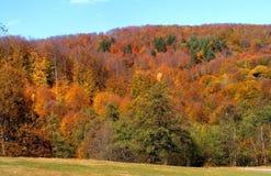 Paysage d'automne près de ville de Curtea de Arges, comté d'Arges photos stock
