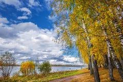 Paysage d'automne sur la rivière Enregistrement de la Sibérie occidentale, Novosibirsk images libres de droits