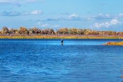 Paysage d'automne sur la rivière Enregistrement de la Sibérie occidentale, Novosibirsk photographie stock