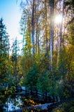 Paysage d'automne sur un lac en Russie centrale photos stock