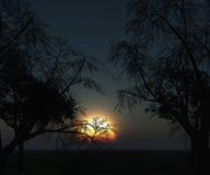 paysage 3D des arbres contre un ciel de coucher du soleil Photographie stock libre de droits