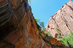 Paysage d'Emerald Pools Trail, Zion Photo stock