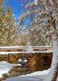 Paysage d'hiver Photos stock